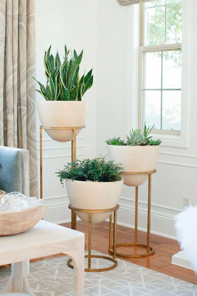 Pin By Tulip Roses On الطبيعة Living Room Corner Room Corner Decor