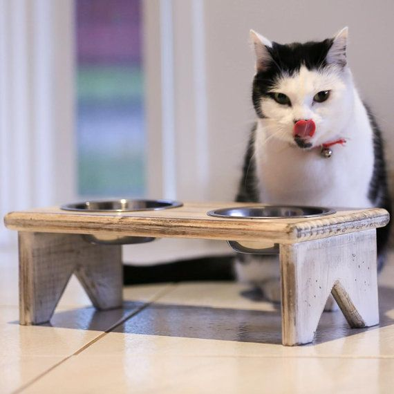 Dog Bowl And Cat Bowl Stand Wooden 2 Bowls Perfect For Serving Your Cat Or Dog Their Food And Water Cat Bowl Stand Pet Bowls Stand Cat Bowls