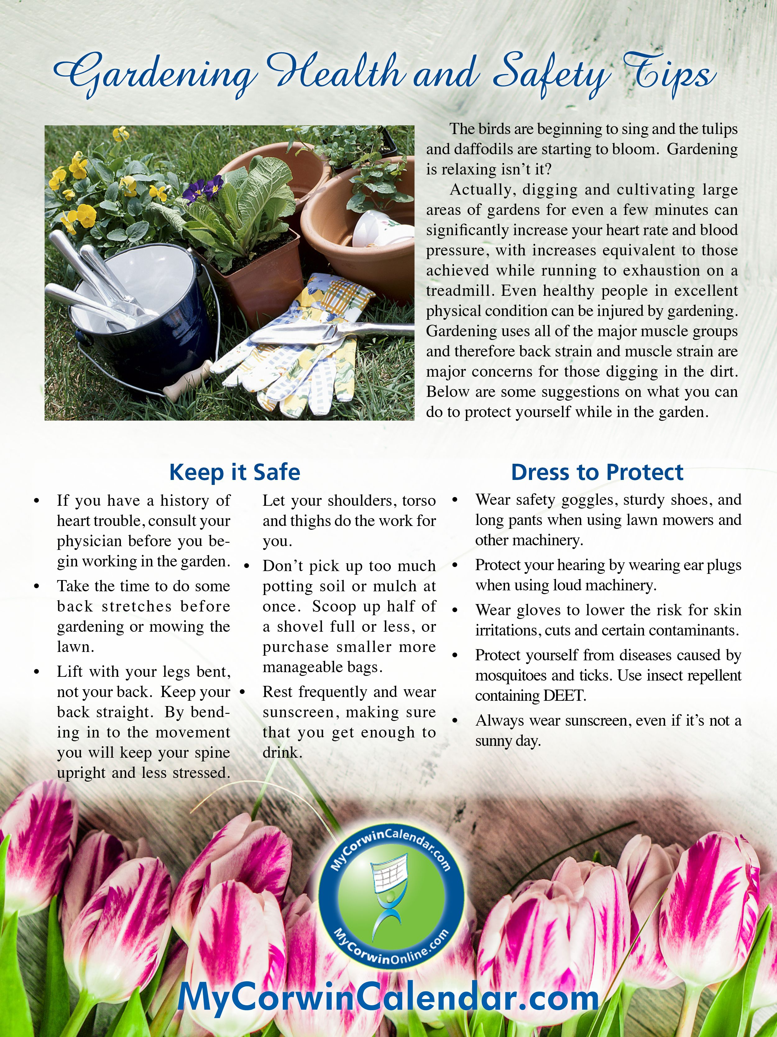 Gardening Safety Tips For Spring
