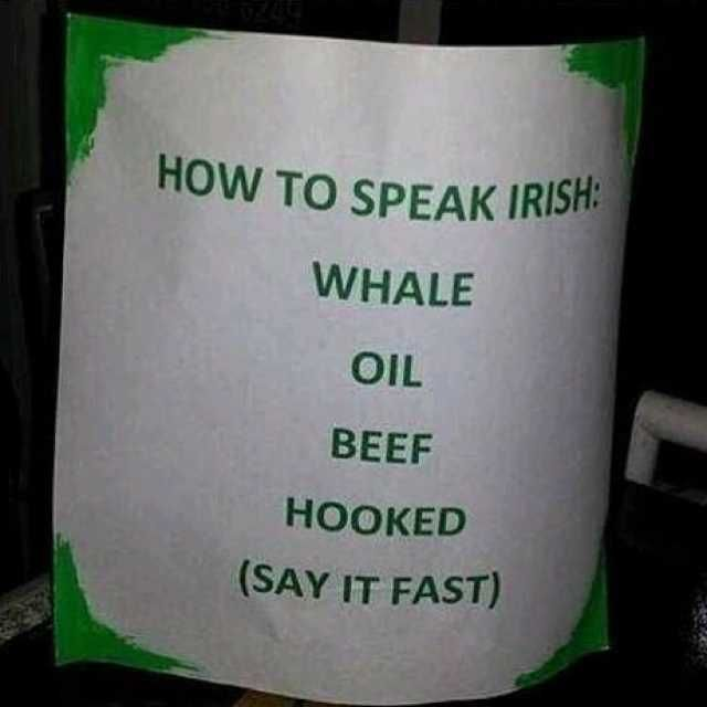 b6367e1ec589 How TO SPEAK IRISH WHALE OIL BEEF HOOKED (SAY IT FAST)