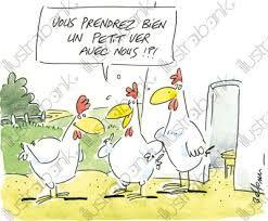 """Résultat de recherche d'images pour """"dessin humoristique de poule"""""""