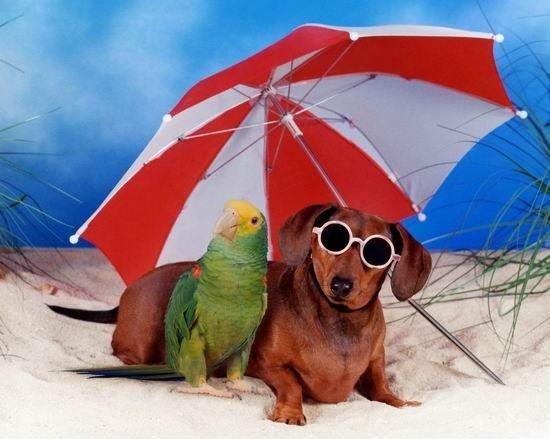 Día de playa con la amiga!