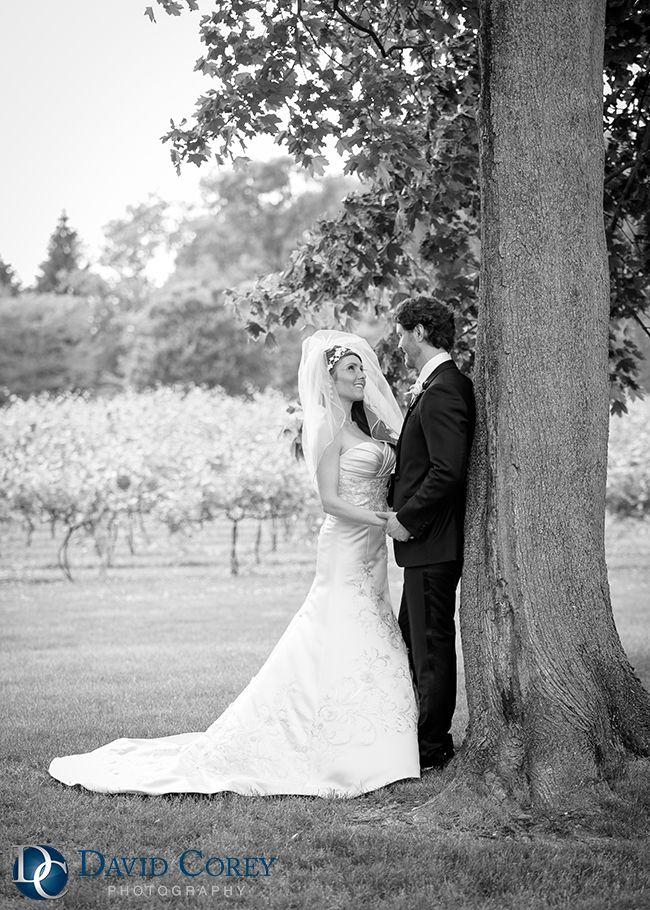 wedding picture locations akron ohio%0A Gervasi Vineyard Wedding  Canton Ohio Wedding  Photo by David Corey  Photography   Northeast Ohio Wedding Venues   Pinterest   Vineyard wedding   Weddings and