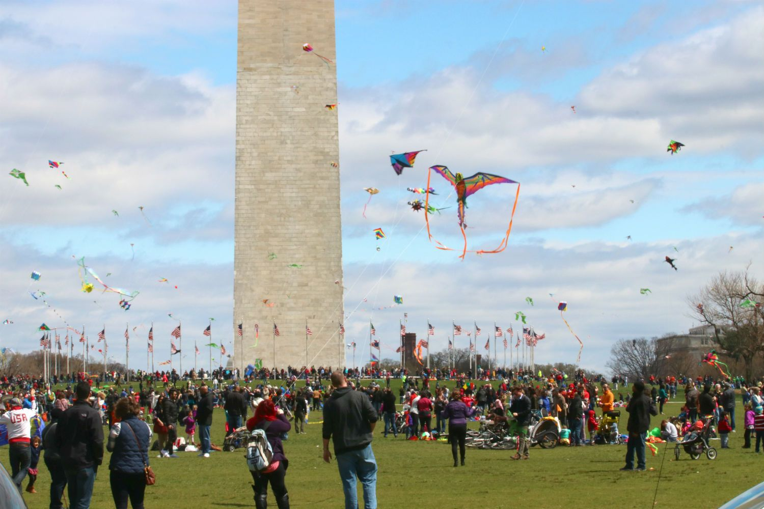 Join Us On Saturday March 31 2018 For The Blossom Kite Festival On The Grounds Of The Washington Monument Free Fami Kite Festival Travel Usa Free Family Fun
