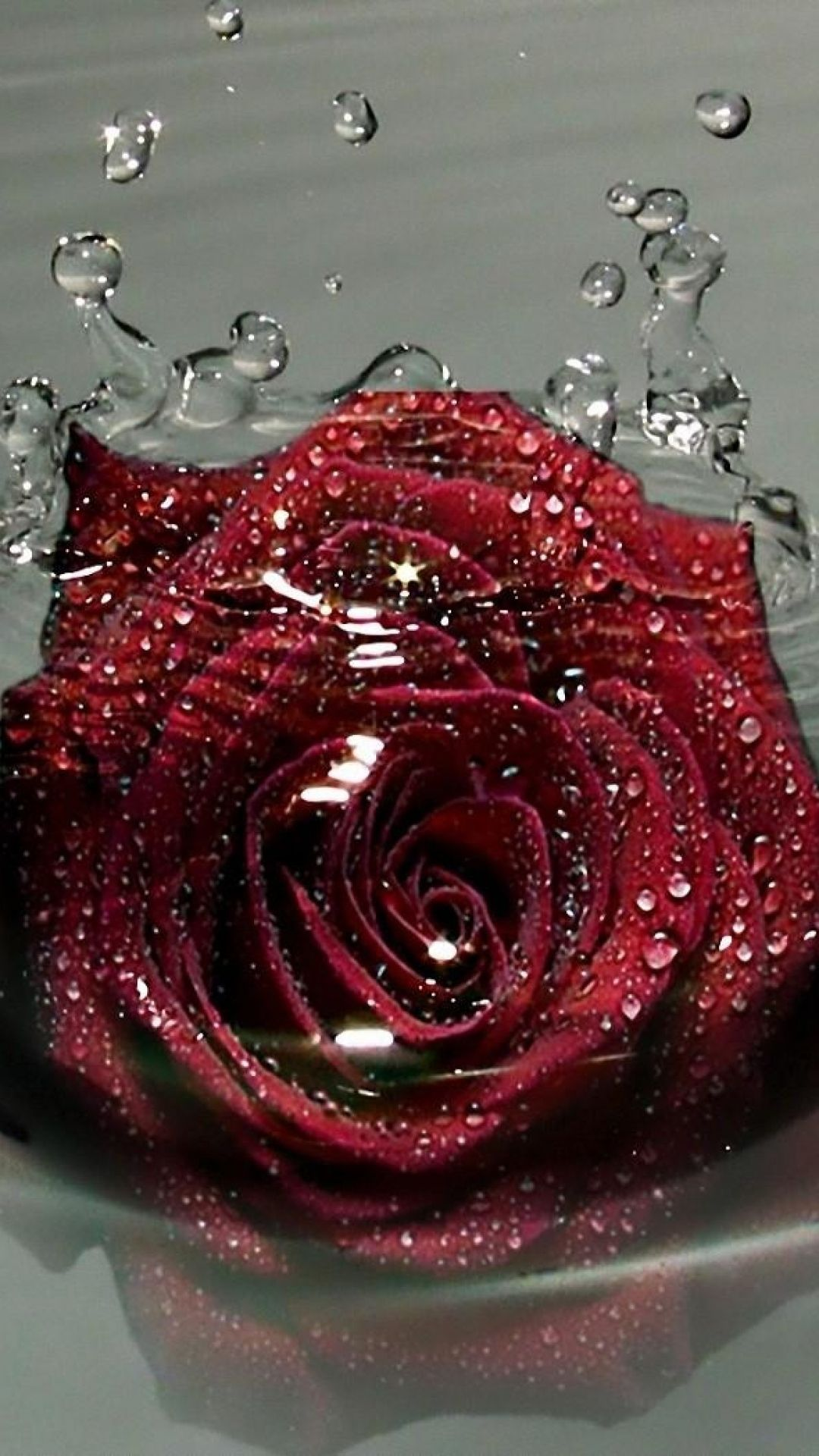 download wallpaper 1080x1920 rose flower bud drops sprays water