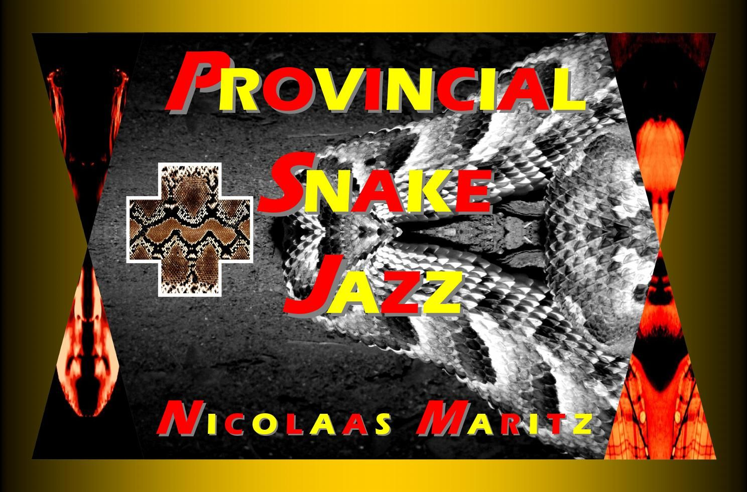 Provincial Snake Jazz - an album  An album of images made by Nicolaas Maritz for the video PROVINCIAL SNAKE JAZZ, a musical collaboration with Vlooi Visagie.   VIDEO: https://youtu.be/XCMlMRjMaxE  MP3 TRACK: https://soundcloud.com/nicolaasmaritz