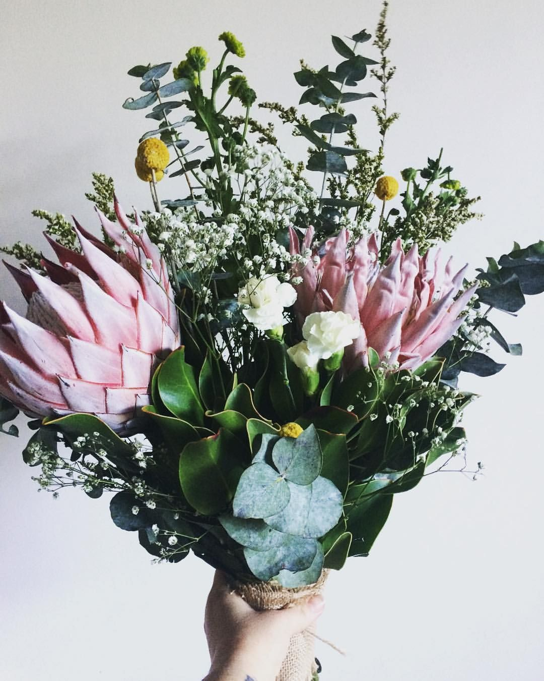 Australian Native Bouquet King Protea Billy Buttons Spinning Gum Babies Breath Flowers Floral Wed Australian Flowers Billy Buttons Babys Breath Bouquet