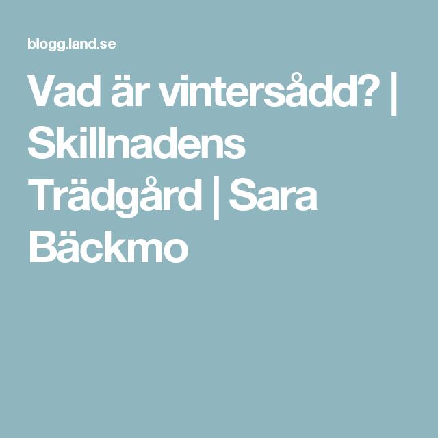 Vad är vintersådd?   Skillnadens Trädgård   Sara Bäckmo