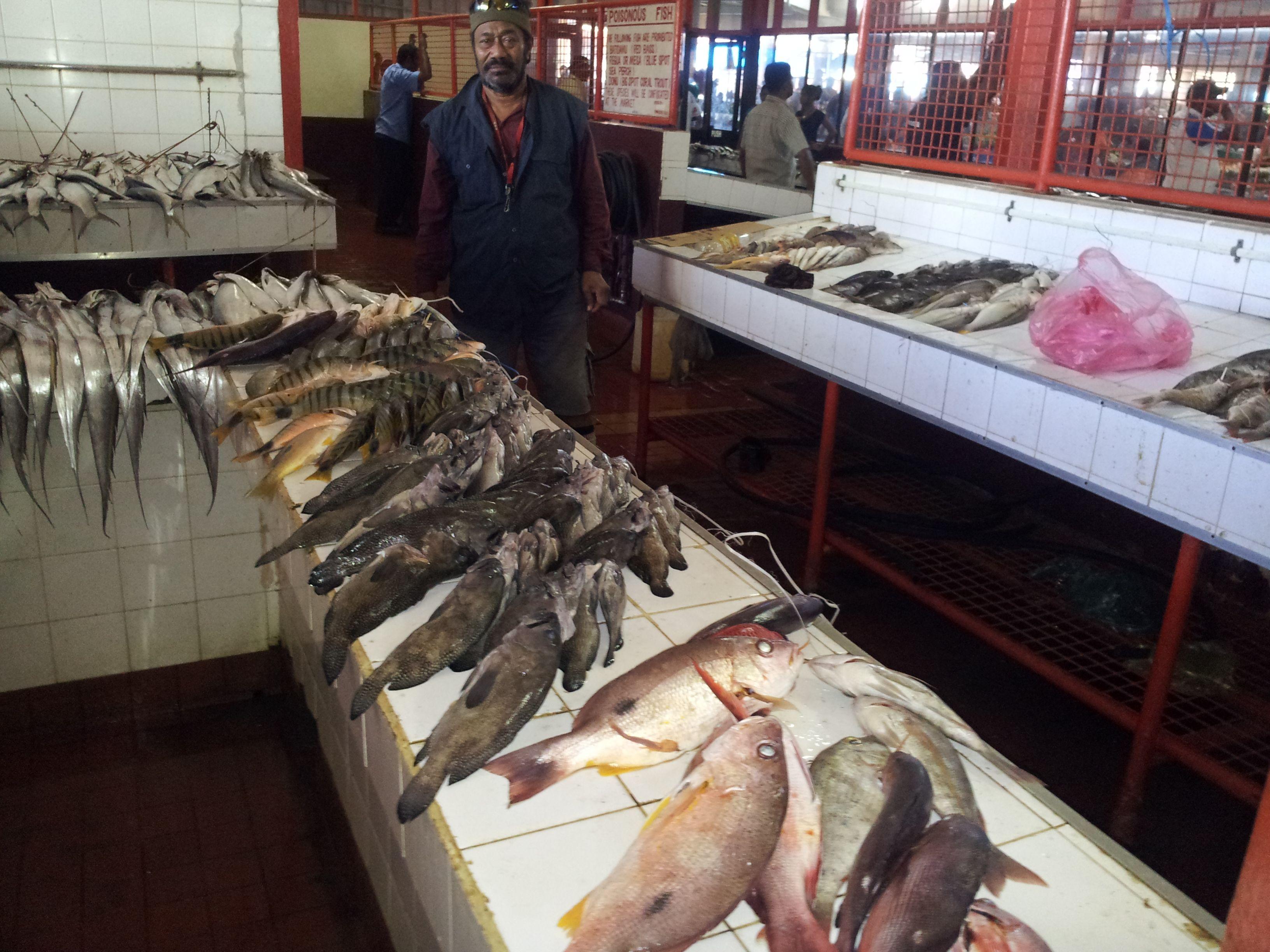 The colour of a fijian fish market lautoka market fiji for Pacific fish market