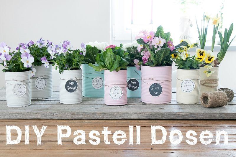 Upcycling Konserven-Dosen in Pastellfarben – CreativLIVE