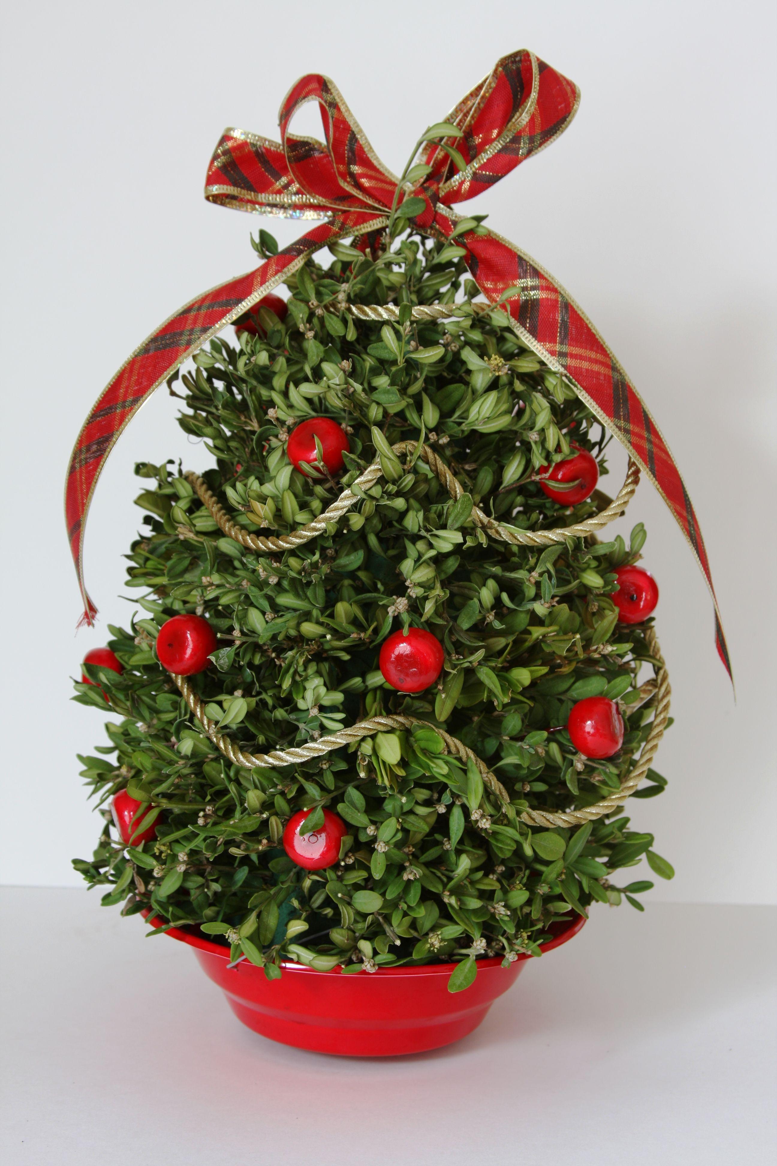 Boxwood Tabletop Christmas Tree 2592—3888