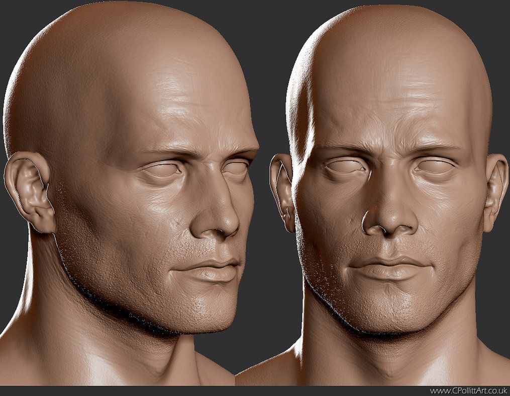 automob 3d anatomy tutorial - 1015×787