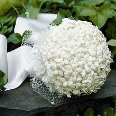 Bouquet Sposa Gelsomino.Bouquet Gelsomino Just Married Bouquet Da Sposa Fiori D