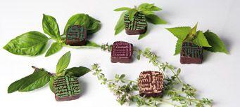 Sandrine Chappaz : Chocolats... en herbe