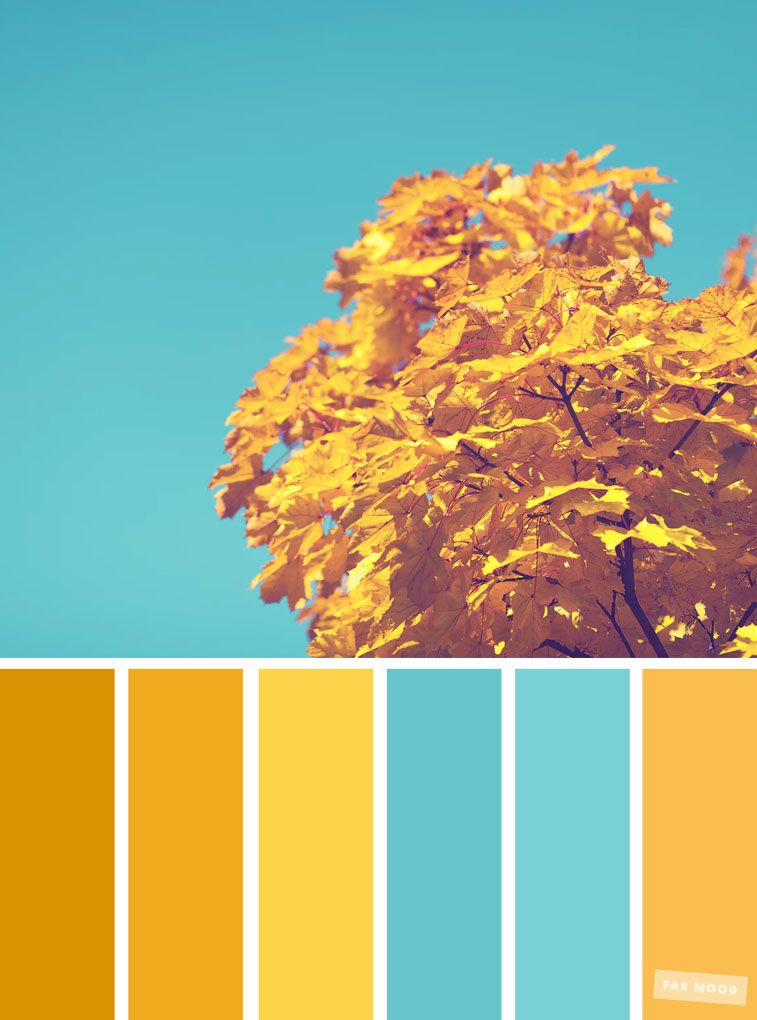 59 Pretty Autumn Color Schemes { Blue and Yellow } | Blue ...
