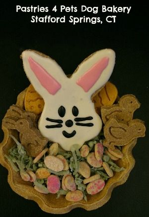 Edible easter basket for dogs made by pastries 4 pets dog bakery edible easter basket for dogs made by pastries 4 pets dog bakery using fidos royal icing negle Image collections