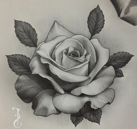 Tattoos And Body Art rose tattoo design in 2020 | Rose flower tattoos, Roses drawing, Realistic ...