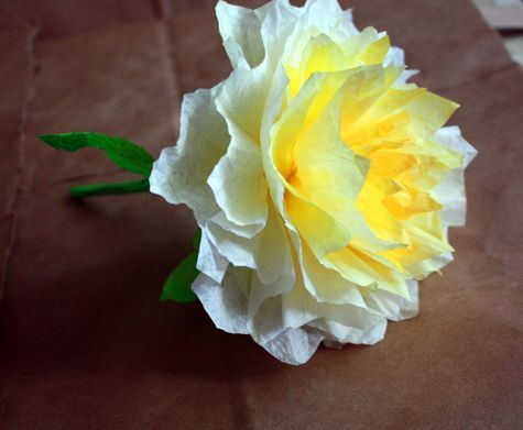 A beautiful coffee filter flower great idea for lasting stunning peaches coffee filter flowers so easy materials for 10 grapefruit size paper peony flowers 60 standard si mightylinksfo