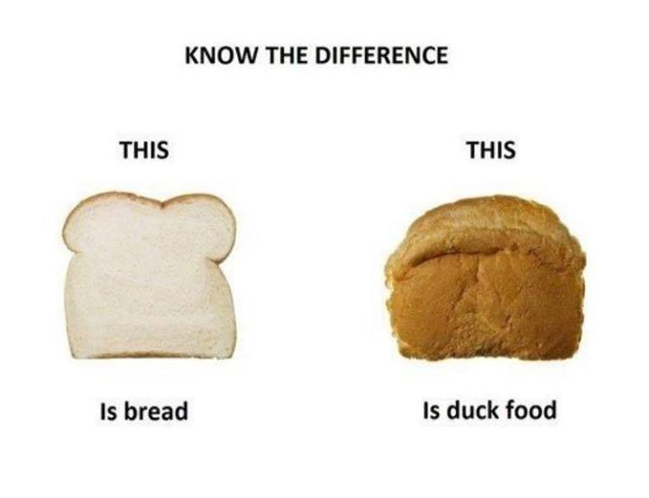 Know The Difference