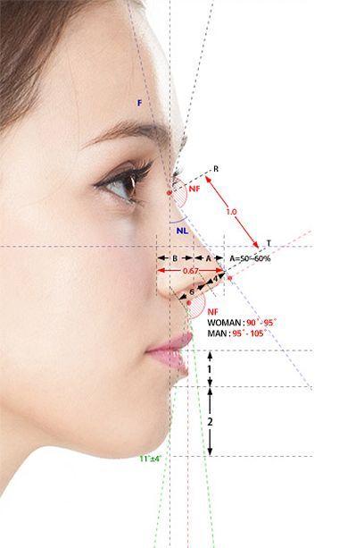 Facial golden ratio