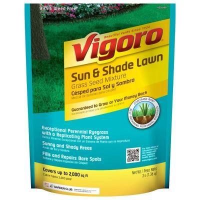 Magnificent Vigoro 3 Lb Grass Sun Shade Lawn Seed 10 98 Home Depot Download Free Architecture Designs Pendunizatbritishbridgeorg