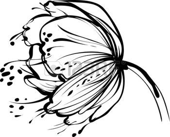 Dessin Fleurs Noir Et Blanc Une Image De La Nature Blanc