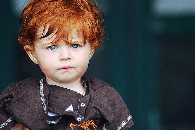 Marcus Galland Ginger Babies Blue Eyed Baby Red Hair Blue Eyes Boy