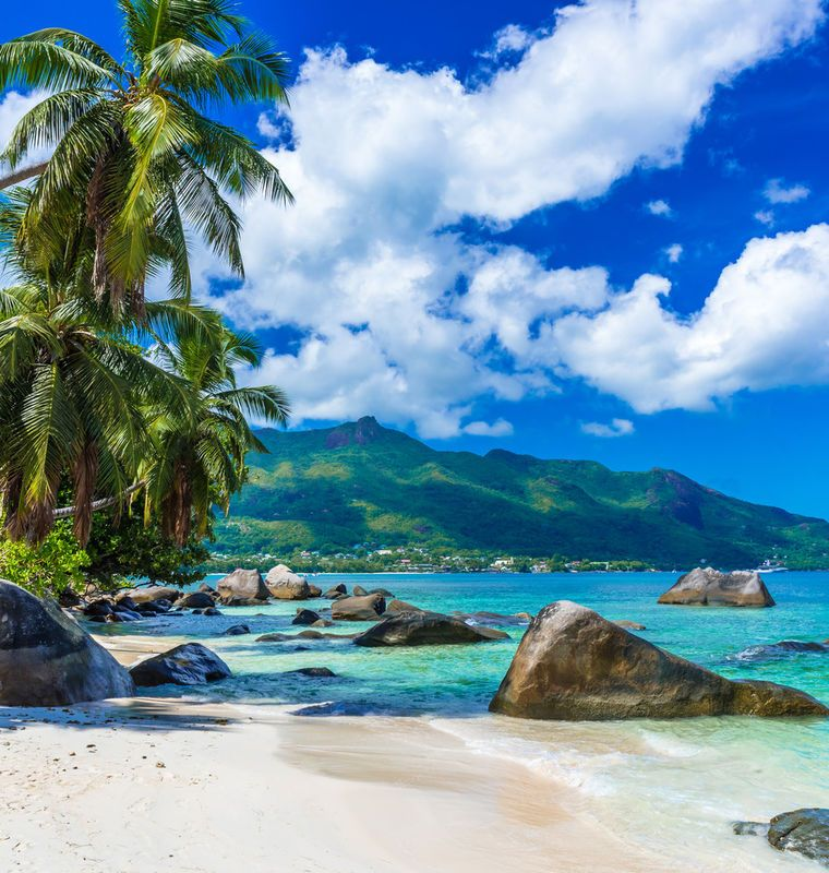 Seychelles Island Beaches: La Digue Island La Digue Island, Seychelles Sky Tree Water
