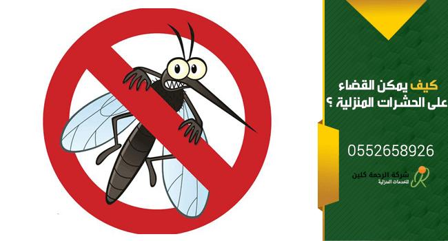 افضل طرق ابادة الحشرات المنزليه