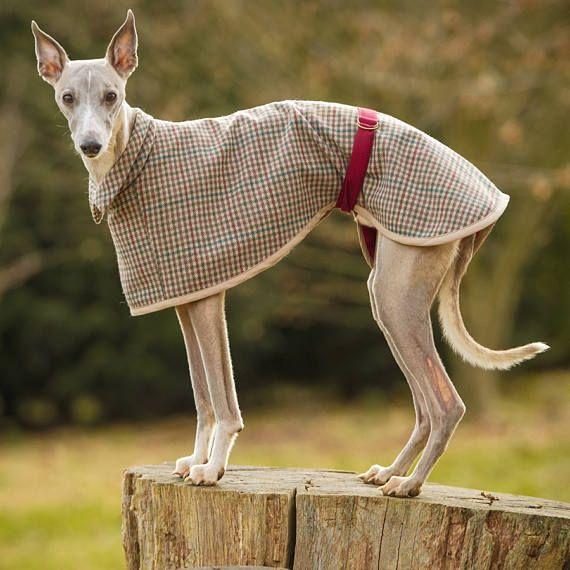 Beautiful Whippet Coat Sewing Pattern Image - Knitting Pattern Ideas ...