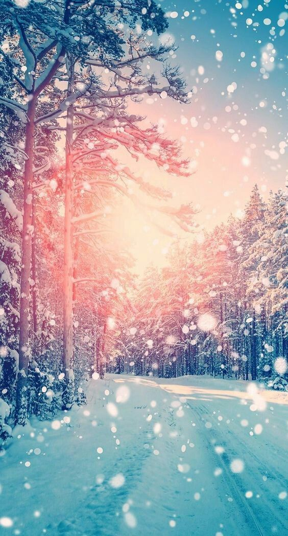 44 winter iphone wallpaper ideas winter backgrounds for - Free winter wallpaper for phone ...