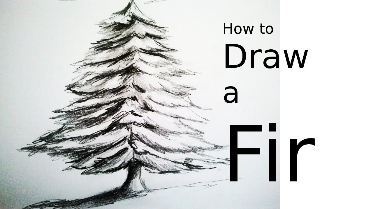 How to draw a tree a fir with pencil drawing easy and for Cute christmas tree drawing