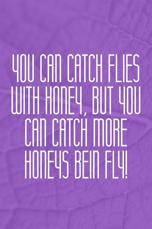 You can catch flies with honey, but you can catch more honeys bein fly!