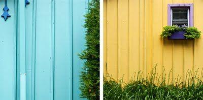 Neighbors.Colors.