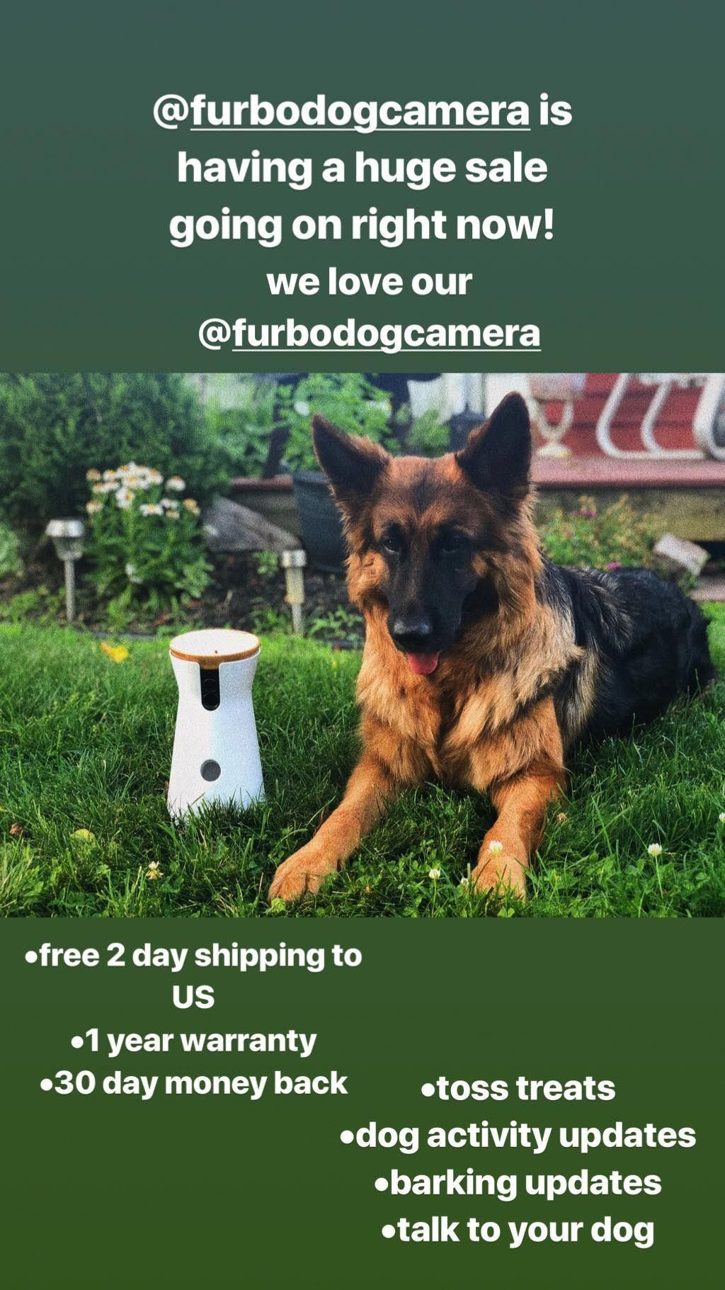 Treat Tossing Dog Camera With Audio Crate Training Puppies