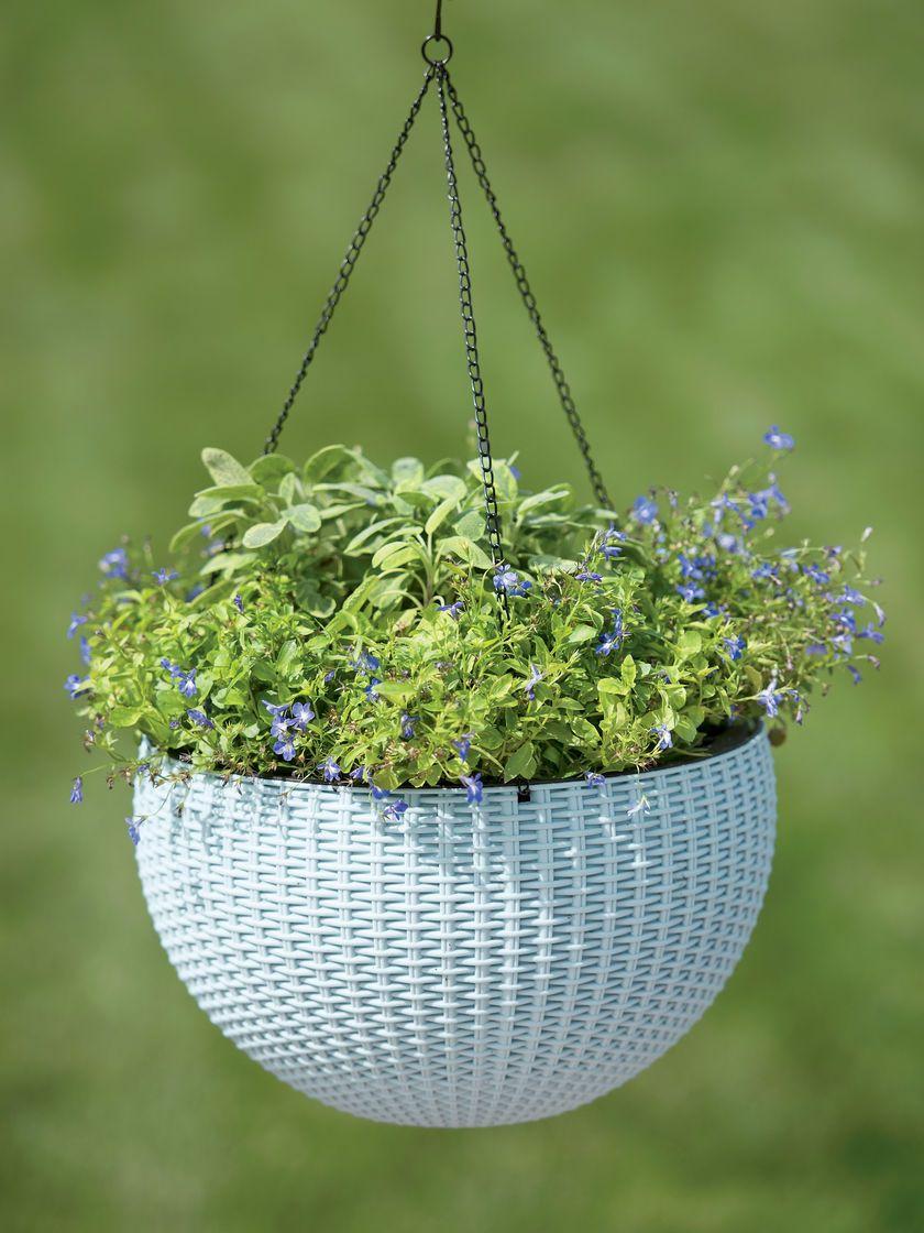 Weave Self Watering Hanging Basket 14 Gardener S Supply