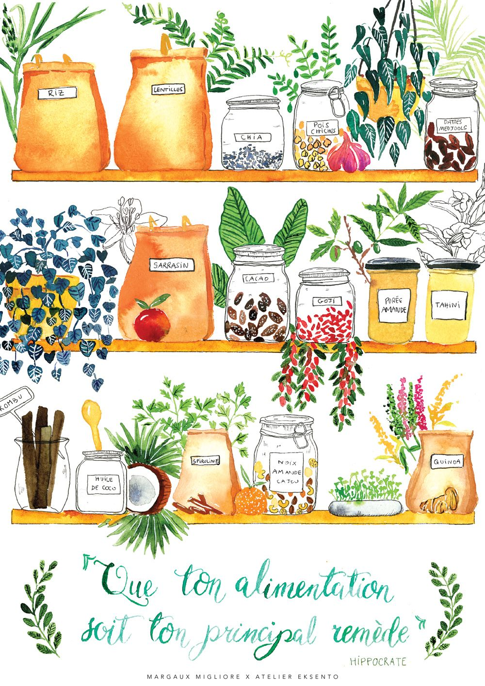 Affiche Poster La Naturopathie Illustree Aquarelle