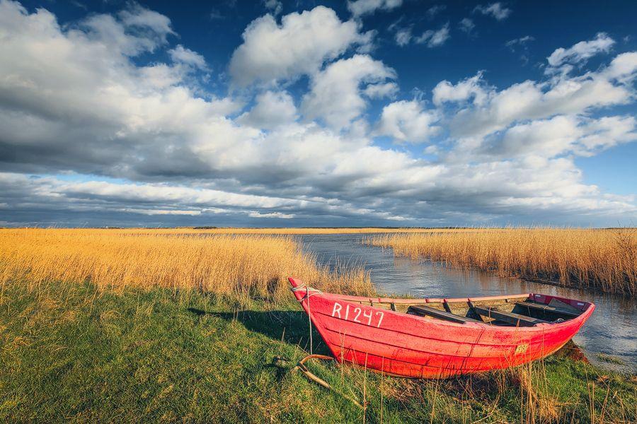 Knallrotes (Gummi-)Boot, Anker, Boot, Dänemark, Schilf, Ufer, Wolken, Jütland, Fjord, Denmark