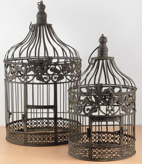 Bird Cages Ivy Eagle Set Of Two Brown Metal 2
