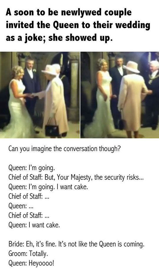 That One Time The Queen Showed Up To Someone S Wedding Funny Memes Stupid Funny Really Funny