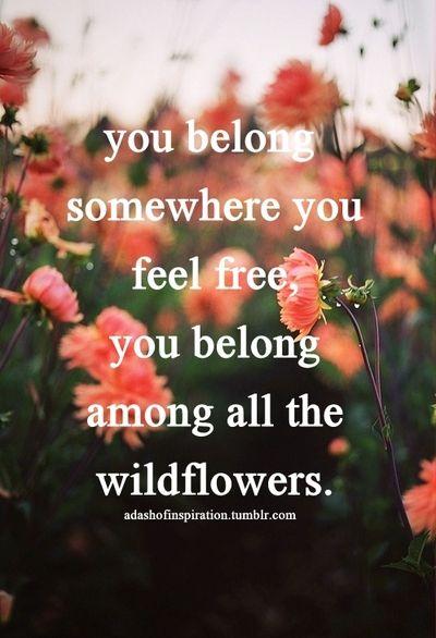 You Belong Somewhere You Feel Free You Belong Among All The