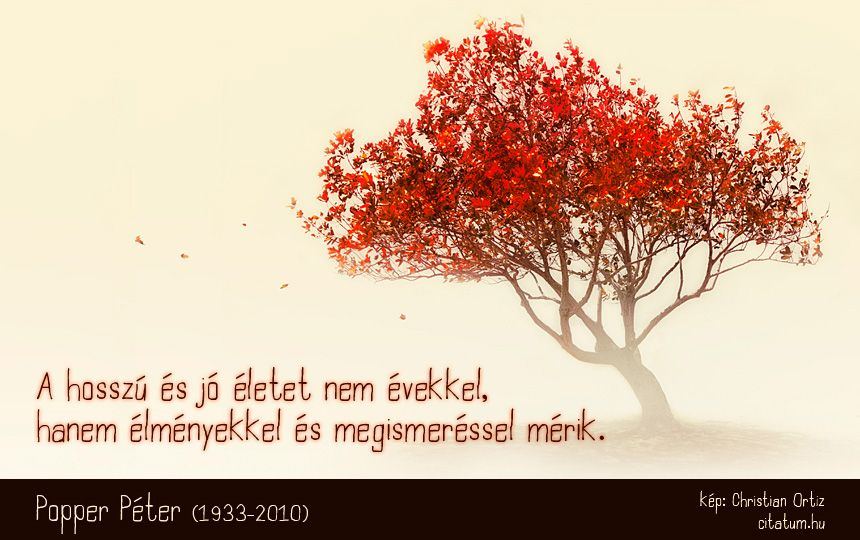 idézetek popper péter Popper Péter idézet a jó életről. | Life quotes, Life, Quotes