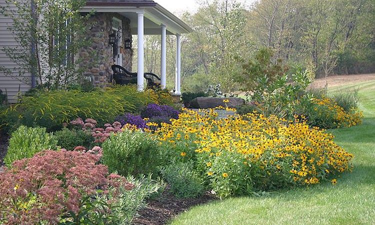 Paul W Steinbeiser Landscape Design Construction Front Yard Garden Design Native Plant Gardening Native Garden