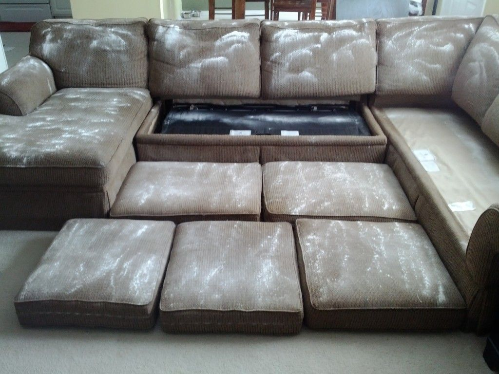 Remove Couch Odors With Baking Soda I Did This Last Night And