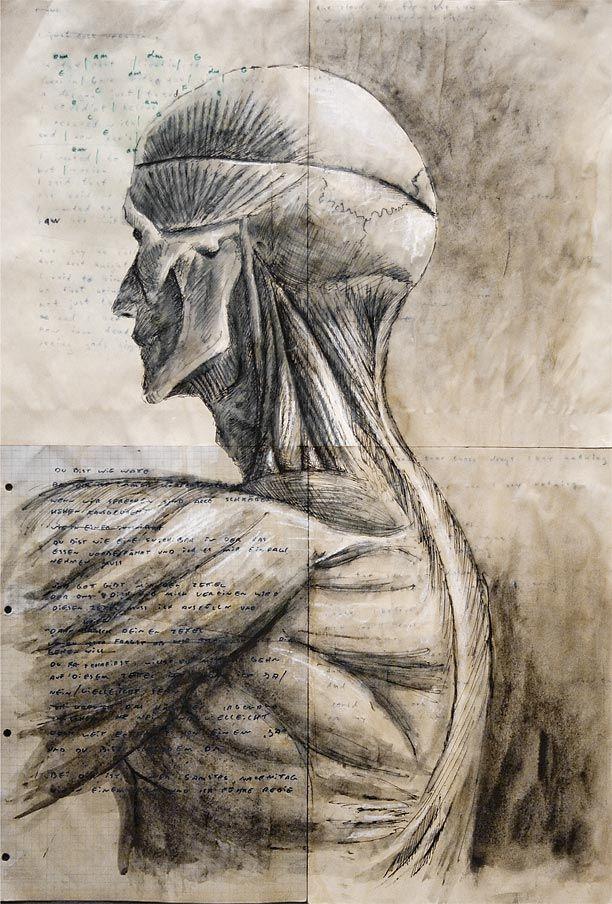 Architektur Mensch | Architektur, Anatomie und Der mensch