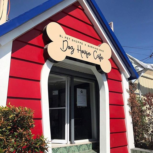 Must Visit The Biggest Dog House In The North Dog Cafe Dog