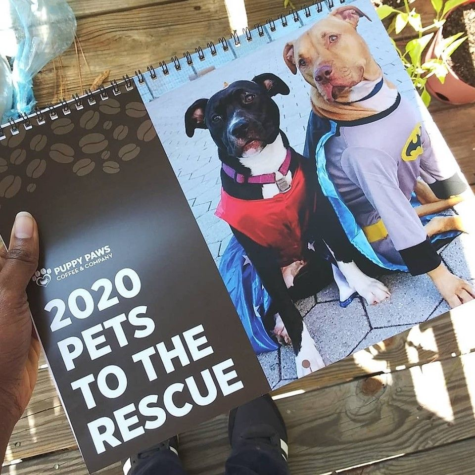 Over 300 pets helped us put this calendar together to help
