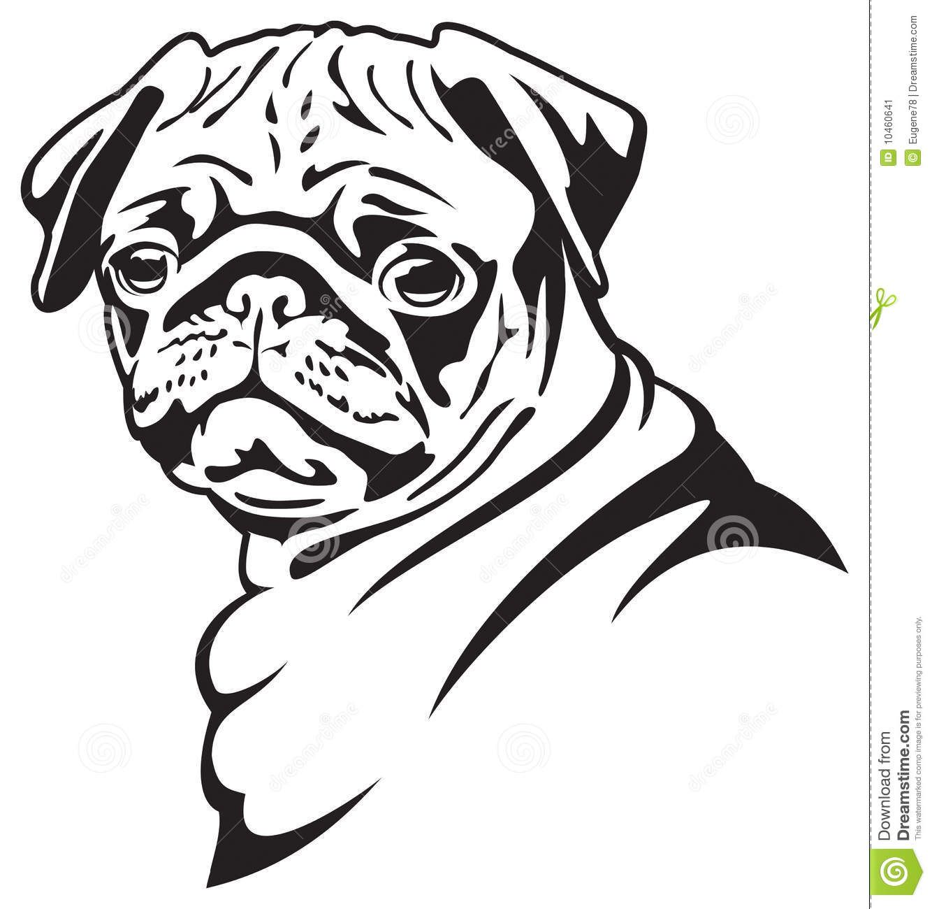 Contour Line Drawing Of A Dog : Dog pug download from over million high quality