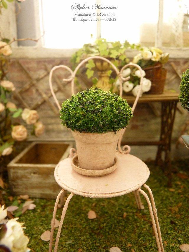 Topiaire miniature à la française dans pot en terre cuite et coupelle rose…