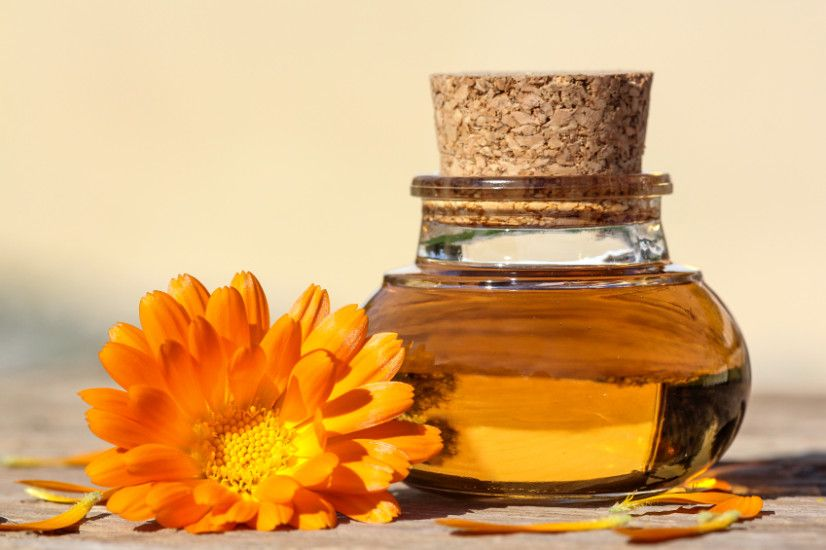 mesickovy olej olej z mesicku lekarskeho recept postup navod priprava vyuziti uzivani
